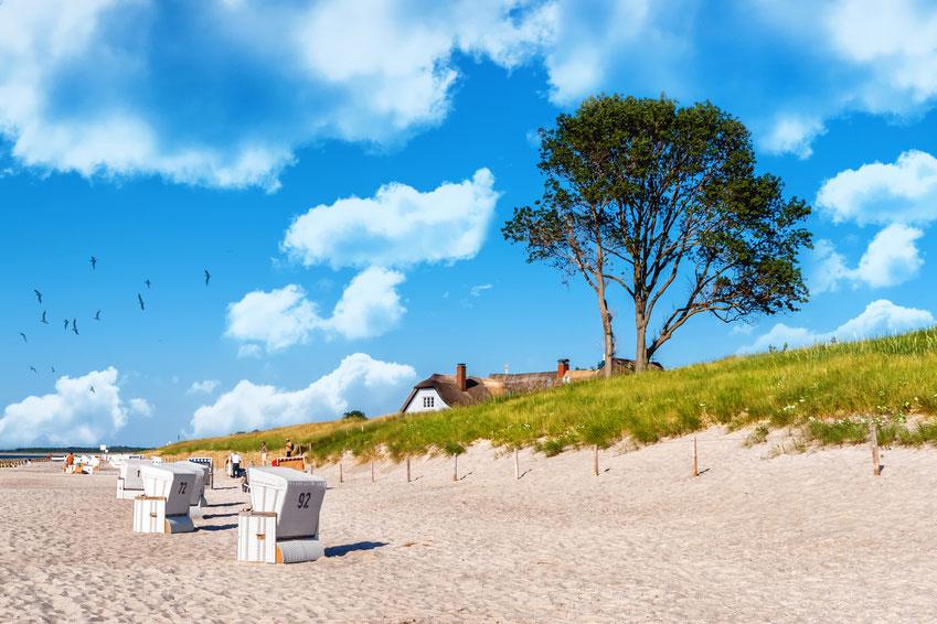 Strand von Ahrenhoop