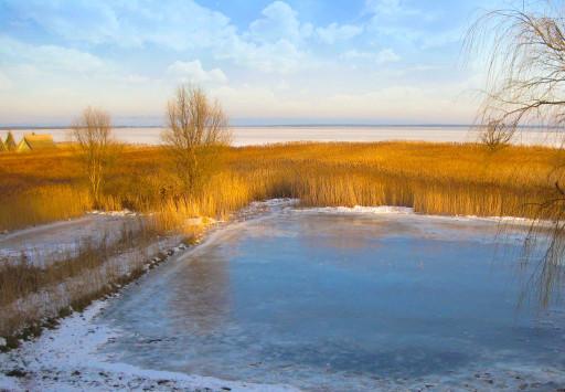 Blick auf den vereisten Bodden im Winter